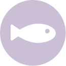 icon_fish_light_purple