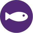 icon_fish_purple