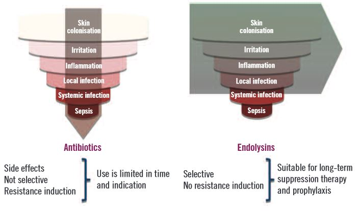 Fig 3. Bacteria interact with the human body across a spectrum of stages, the colonisation-infection continuum. Every infection is preceded by colonisation, after which progression to severe systemic infection and sepsis eventually can occur. As antibiotics are not selective and induce resistance, their use is limited in time and indication. Unlike antibiotics, endolysins are very selective and do not induce resistance. Therefore, they can be used to suppress S. aureus colonisation and intervene at the early stages of the continuum, before colonisation leads to infection.